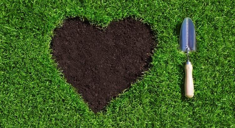 косене на трева, поддръжка на дворно място
